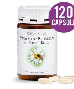 Vitamine cu laptisor de matca 120 capsule